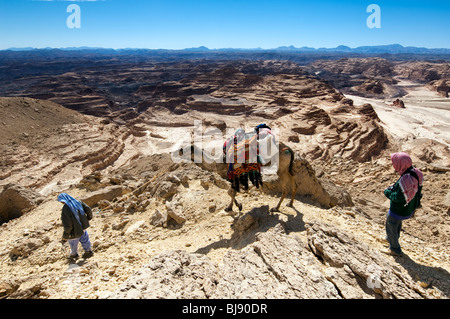 two men, a westerner and a Bedouin, along with the latter's camel, walk the Sinai desert in the Jebel Gunah area - Stock Photo