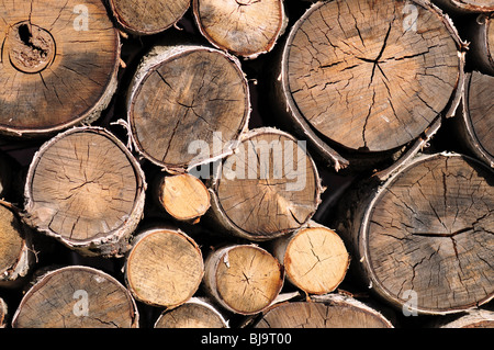 Pile of logs for firewood - Stock Photo