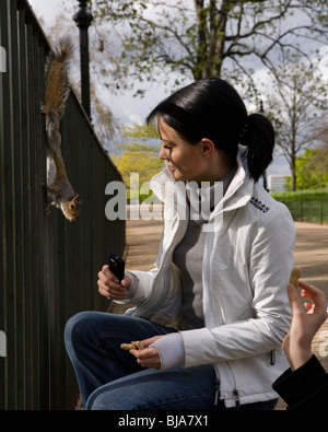 woman with black hair feeding squirrel nuts in the park Stock Photo