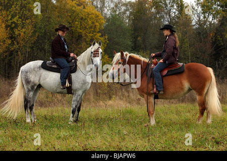 Two cowgirl and andalusian horse (Equus ferus caballus) - Stock Photo