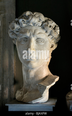 Bust of David in Rocca Castello museum Carrara, Italy. One of many fine sculptures in local Carrara marble quarry - Stock Photo