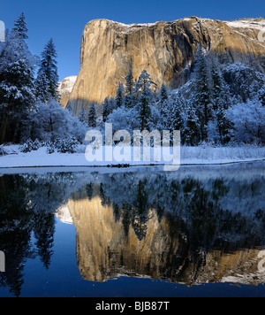 Morning light on El Capitan mountain in winter reflected in the Merced River with snow covered trees in Yosemite - Stock Photo