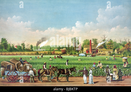 Lithograph colour print circa 1884 of a 19th century cotton plantation on the Mississippi River. - Stock Photo