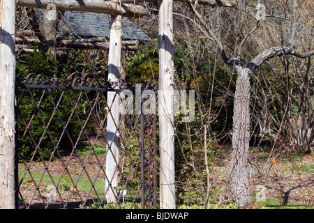 Wrought iron fence in a garden. - Stock Photo