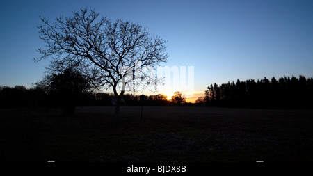 Sunset in the Chiltern Hills Oxfordshire England UK - Stock Photo