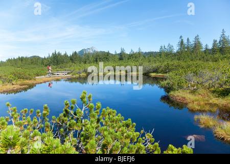 Hiker by a lake, Salzkammergut, Austria - Stock Photo