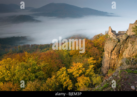 View over the Rhine Valley with Hohenbaden Castle, Baden-Baden, Germany