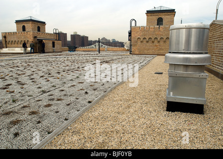 The newly installed green roof of the Power House building in Mill Pond Park in the New York borough of the Bronx - Stock Photo