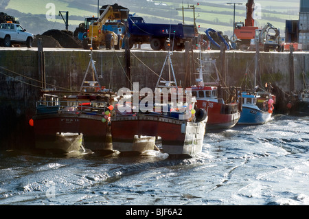 Catamaran fishing boats stand in slimy mud at low tide in Padstow harbour, North Cornwall, UK - Stock Photo