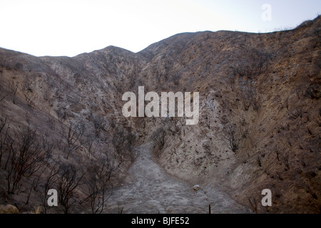 Scorched earth and burnt trees from Station fire in September, 2009. Angeles National Forest, Los Angeles, California - Stock Photo