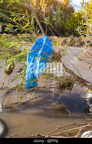 Plastic bags and other trash get caught and accumulate in trees and shrubs along the Los Angeles River. Los Angeles, California Stock Photo