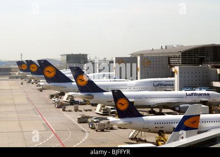 Lufhansa planes at the airport in Frankfurt am Main, Germany - Stock Photo