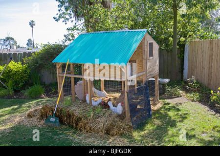 Chicken coop in backyard of house in Los Angeles, California, USA - Stock Photo