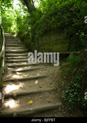 Ecclesbourne Glen, Hastings Country Park, Hastings, Sussex, England, UK - Stock Photo