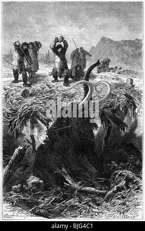 Neolithic Mammoth Hunt Stock Photo, Royalty Free Image ...