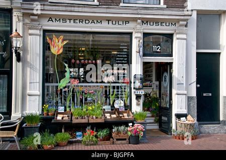 Amsterdam Tulip Museum Flower shop Jordaan  The Netherlands - Stock Photo