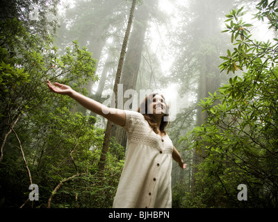 woman walking through a forest of giant redwoods - Stock Photo