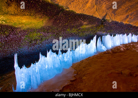 Ice forms along a spring, Arches National Park, Utah, inside large cave in winter - Stock Photo