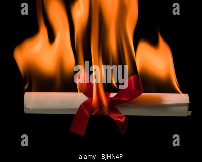 diploma on fire - Stock Photo