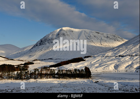 Vista of snowy mountains and blue sky seen across a wide snow-filled valley with stands of trees - Stock Photo