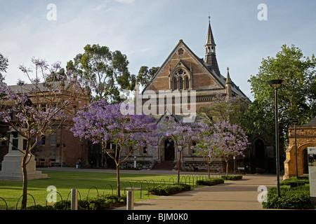 Historic buildings of the University of Adelaide, South Australia, Australia - Stock Photo