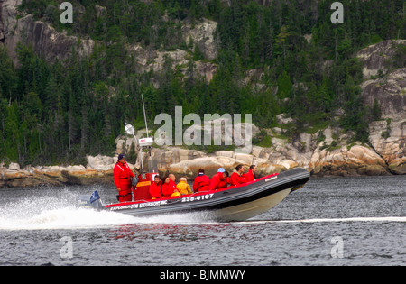Tourists in a Zodiac inflatable boat of the Otis Excursions Inc. company, excursion on the St. Lawrence River, Tadoussac, Canada