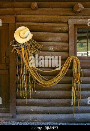 Straw cowboy hat and multiple halters and lead ropes hanging on a ranch log barn wall next to a door and window, - Stock Photo