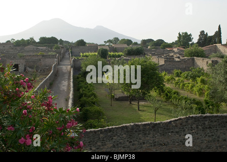 Italy, Campania, Pompeii, archaeological district, excavations of the Roman town of Pompeii, Vesuv in the background - Stock Photo