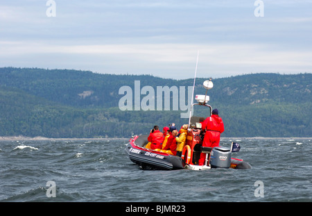 Tourists in a Zodiac inflatable boat of the Otis Excursions Inc. company, whale-watching on the St. Lawrence River, Tadoussac,