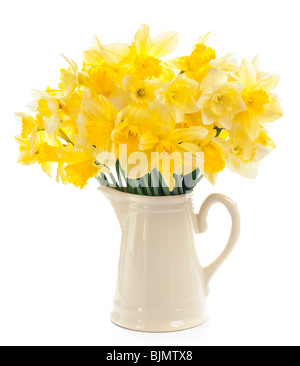A bunch of cheerful yellow daffodils in cream jug against white studio background - Stock Photo