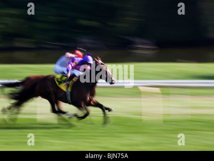 Two colourful horse racers photographed using camera panning at Arlington Park racetrack, Arlington Heights, Illinois - Stock Photo