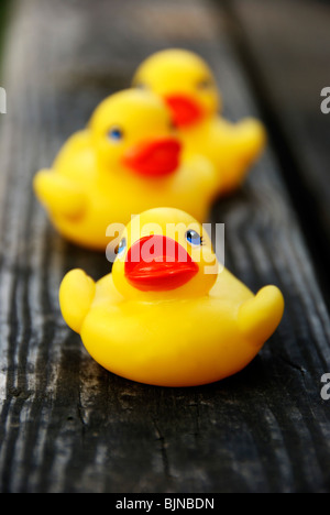 rubber toy ducks in a row - Stock Photo