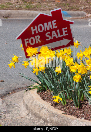 House For Sale sign and daffodils, Spring of 2010 - Stock Photo
