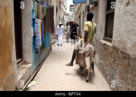 Donkey and rider in one of the narrow streets of Lamu - Stock Photo
