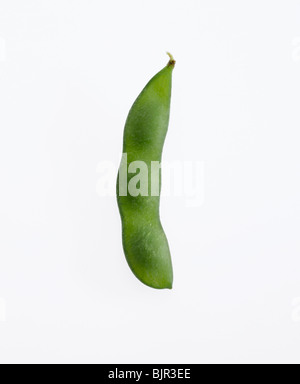 soybean and pod - Stock Photo