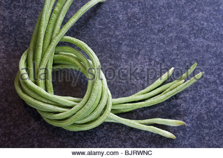 Beans tied together - Stock Photo
