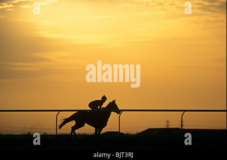 A silhouette of a jockey riding a horse - Stock Photo