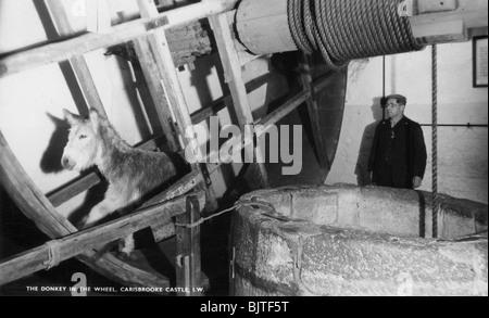 The donkey in the wheel, Carisbrooke Castle, near Newport, Isle of Wight, 20th century. Artist: Unknown - Stock Photo