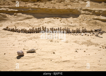 Fossilised bones of ancient whales in the Valley of The Whales, Wadi El-Hitan, Western Desert of Egypt - Stock Photo