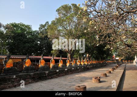 Thailande, Ayutthaya, Boudha drapé, Le Phra Mongkhon Bophi; - Stock Photo