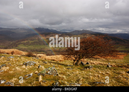 A view from the Pony Path on Cadair Idris, looking north to the Rhinog mountain range. Snowdonia National Park, - Stock Photo