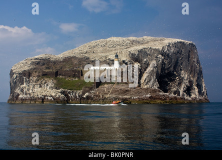 The Bass Rock up close, and a tourist dinghy leaving. The sky is awash with gulls, terns & gannets. - Stock Photo