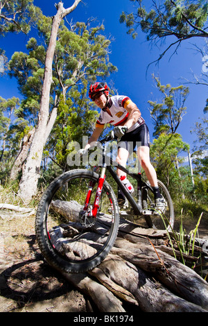 Mountain bike riding - Stock Photo