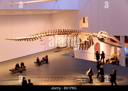 Mobile Matrix, 2006, Graphite on gray whale skeleton, Gabriel Orozco, MOMA - Stock Photo