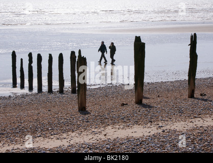 Two people in the distance walking on a beach in East Sussex. The upright wooden posts are the remains of old sea - Stock Photo