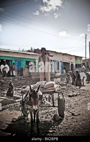 Man on cart with horse Village near Simien National Park, Ethiopia - Stock Photo