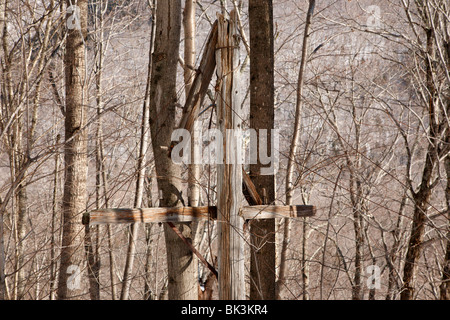 Crawford Notch State Park - Old telephone poles along the old Maine Central Railroad in the White Mountains, New - Stock Photo