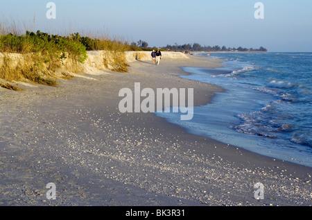 Bowman's Beach - Sanibel Island, Florida USA - Stock Photo