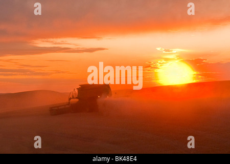 A John Deere combine harvests soft white wheat on the hills of the Palouse region of Eastern Washington at sunset - Stock Photo