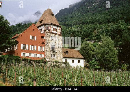 The Red House is one of the historical sites in Vaduz, Liechtenstein - Stock Photo